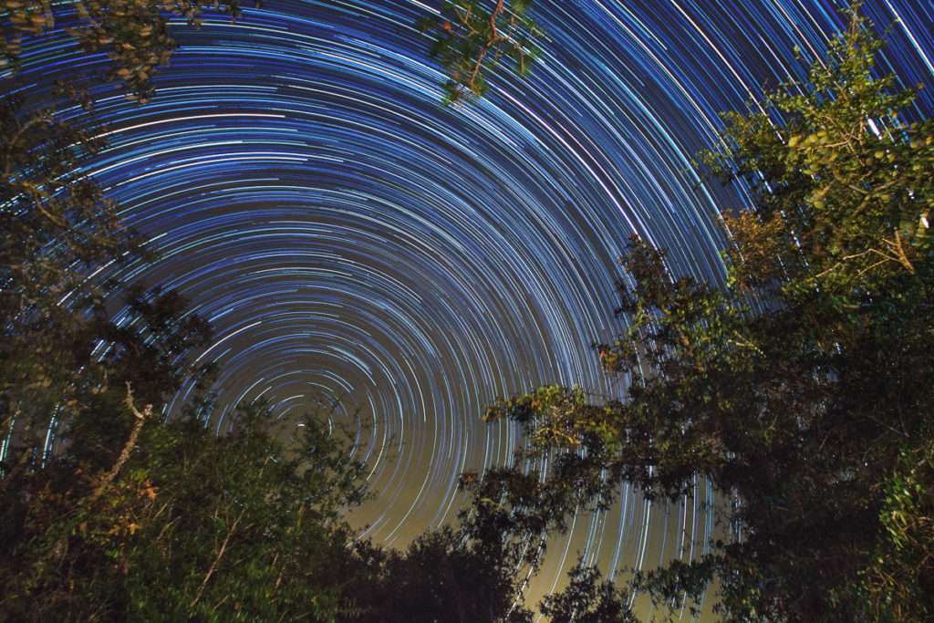 star trails at gold head branch state park in florida
